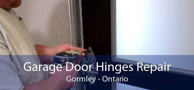 Garage Door Hinges Repair Gormley - Ontario