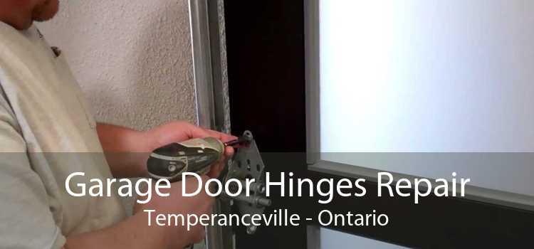 Garage Door Hinges Repair Temperanceville - Ontario