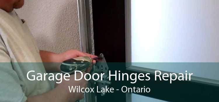 Garage Door Hinges Repair Wilcox Lake - Ontario