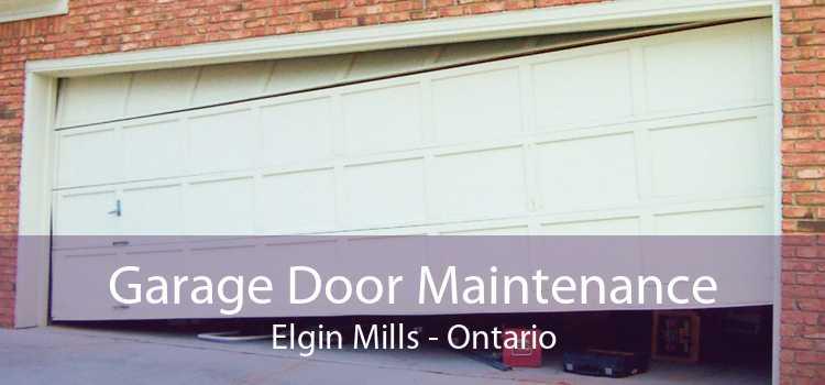Garage Door Maintenance Elgin Mills - Ontario