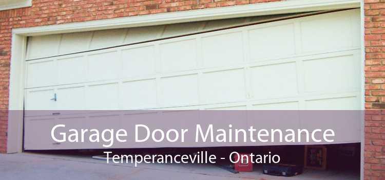Garage Door Maintenance Temperanceville - Ontario