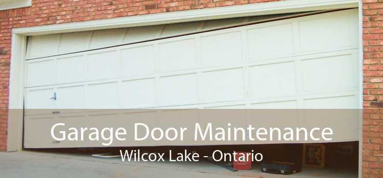 Garage Door Maintenance Wilcox Lake - Ontario