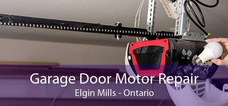 Garage Door Motor Repair Elgin Mills - Ontario
