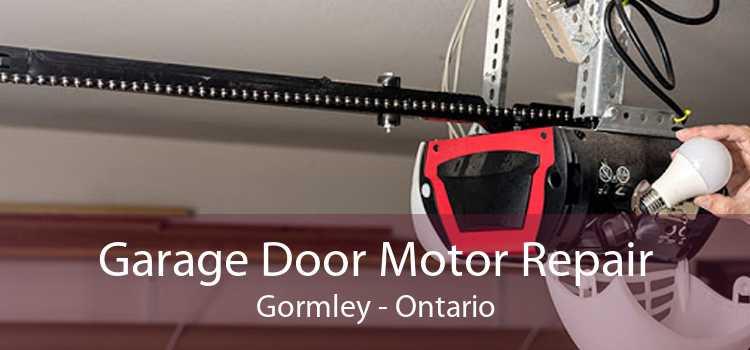 Garage Door Motor Repair Gormley - Ontario