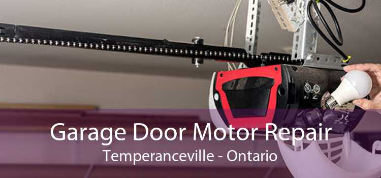 Garage Door Motor Repair Temperanceville - Ontario