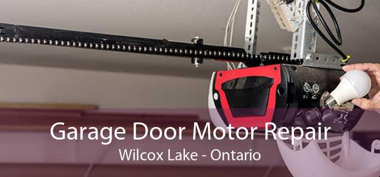 Garage Door Motor Repair Wilcox Lake - Ontario