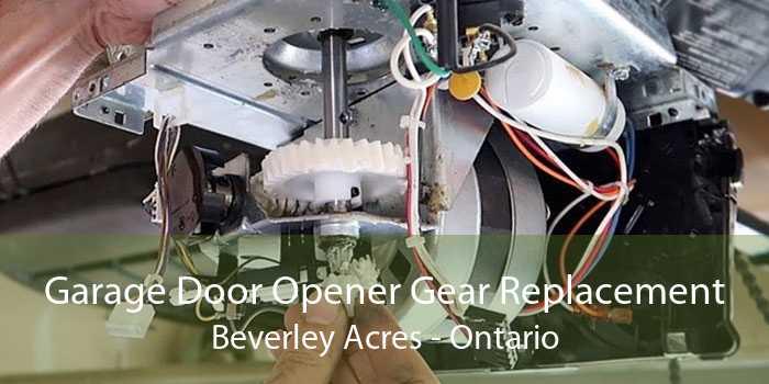 Garage Door Opener Gear Replacement Beverley Acres - Ontario
