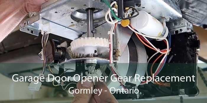 Garage Door Opener Gear Replacement Gormley - Ontario