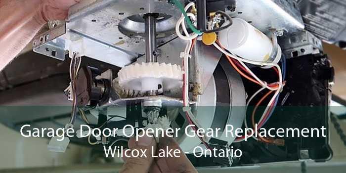 Garage Door Opener Gear Replacement Wilcox Lake - Ontario