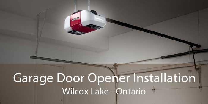 Garage Door Opener Installation Wilcox Lake - Ontario