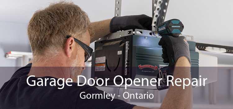 Garage Door Opener Repair Gormley - Ontario