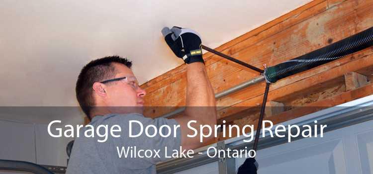 Garage Door Spring Repair Wilcox Lake - Ontario