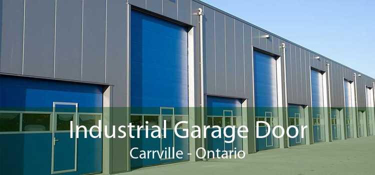 Industrial Garage Door Carrville - Ontario