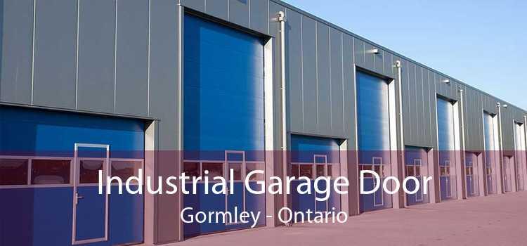 Industrial Garage Door Gormley - Ontario