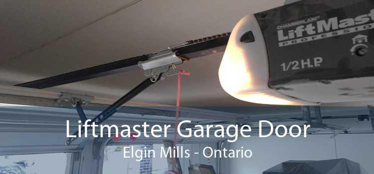 Liftmaster Garage Door Elgin Mills - Ontario