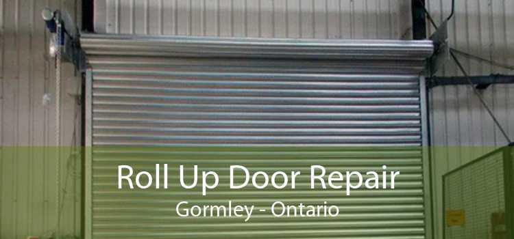 Roll Up Door Repair Gormley - Ontario