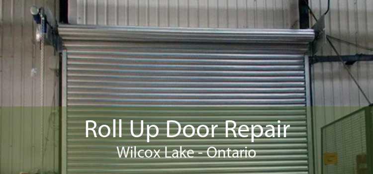 Roll Up Door Repair Wilcox Lake - Ontario